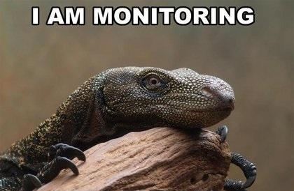 Monitor lizard monitoring
